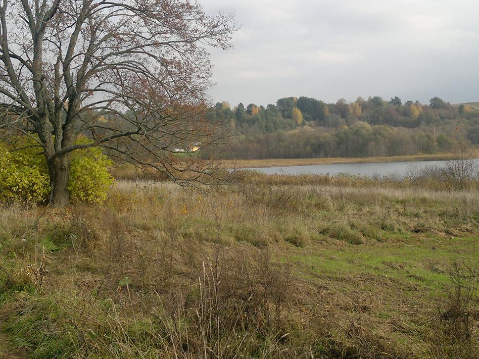Elektrėnų sav., Užupių k.  (78 a, ežero pakrantė, elektra)