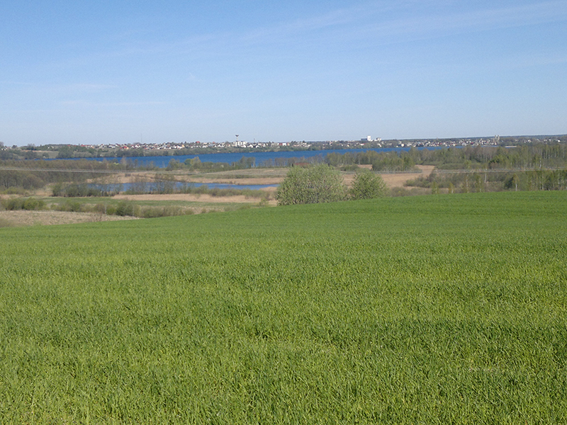Vievis, Ežero g.  (1.06 ha, vaizdas į ežerą)