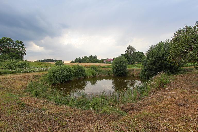 Elektrėnų sav. Vilūniškių k. Trakų g. 32 (namų valda, 30 arų, elektra, tvenkinys)